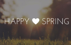 happy spring by amy rachiele